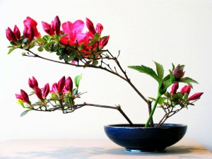 ikebana-2004-desiree-castelijn-beautiful